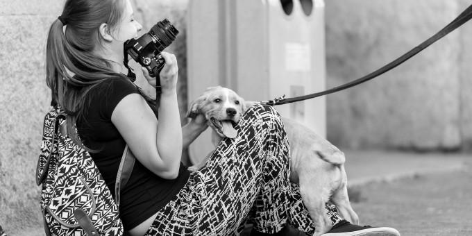 Kurs Fotografii Cyfrowej Wrocław – czerwiec 2015